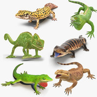 Lizards Rigged Collection 2 for Cinema 4D