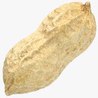 peanut shell 01 3D model