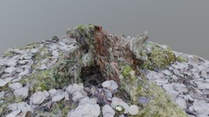 3D scanned mossy stump