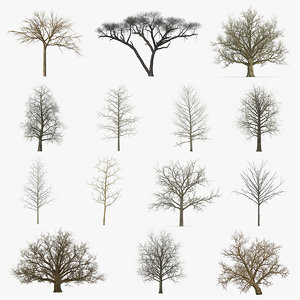 3D model winter trees 4