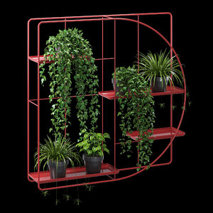 3D bujnie plant model
