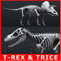 Tyrannosaurus Rex (rigged) and Triceratops Skeletons