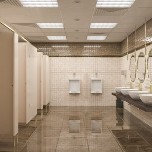 3D interior scene public bathroom