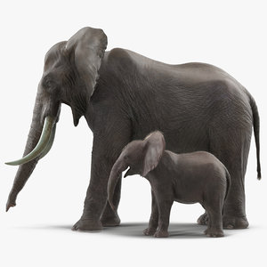 elephants rigged 3D model