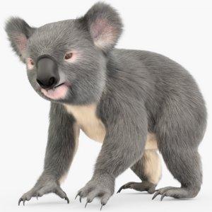 3D koala fur