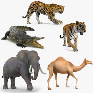 african animals rigged 2 3D model