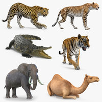 African Animals Rigged Collection 3 for Maya