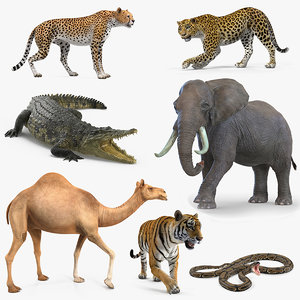 african animals rigged 4 3D model