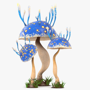 cartoon mushroom v4 pbr 3D model