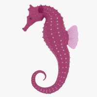 seahorse rigged 3D model