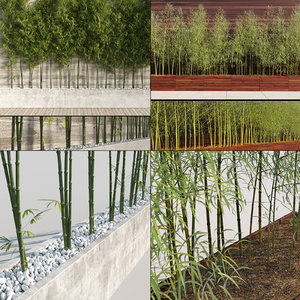 3d bamboo trees