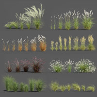 Plants Pack 3: Ornamental Grasses (+GrowFX)