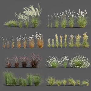 3D plants pack 3: ornamental