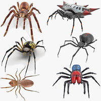 Rigged Spiders Collection 2 for Cinema 4D