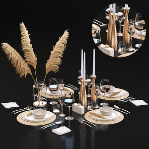 3D table setting 22