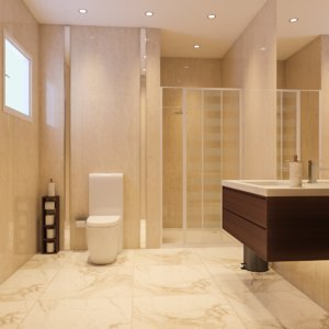 3D interior scene bathroom