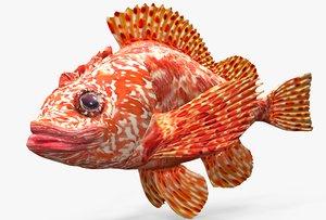 3D animations mediterranean roccofish