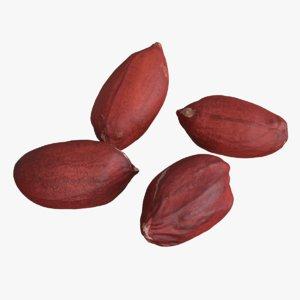 photogrammetry peanut kernels model