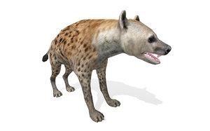 3D model wild animal hyena rigged