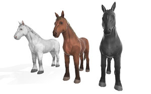 3D realistic animal horse