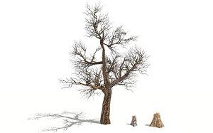 realistic dead tree stump 3D model