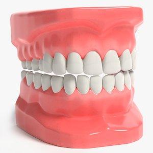 teeth modeled model