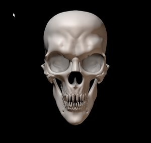 horror skull 3D model