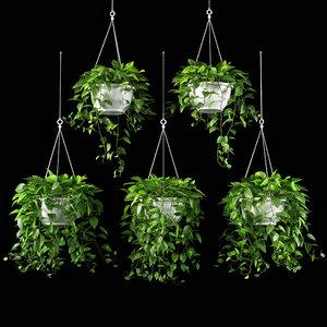 plants set 13 3D
