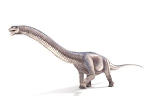argentinosaurus rigged animation 3D model