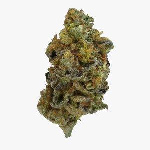 cannabis bud zkittlez 3D
