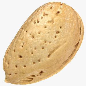almond shell 03 3D model