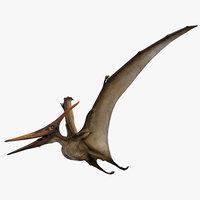 Pteranodon Longiceps Rigged