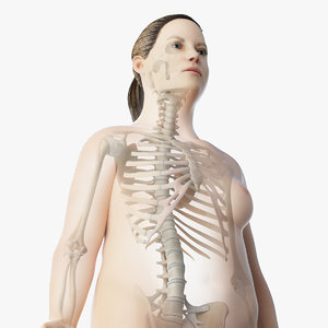 skin obese female skeleton 3D model