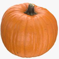 Jack o Lantern Pumpkin 03