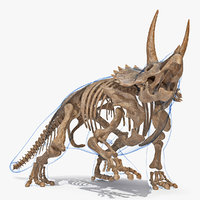 Triceratops Skeleton Fossil with Transparent Skin Rigged