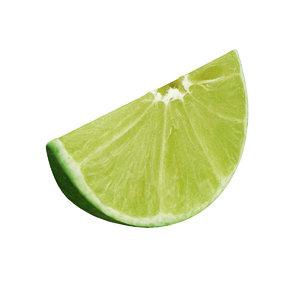 lime slice 3D model