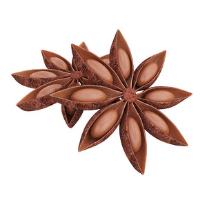 3D anise food spice model