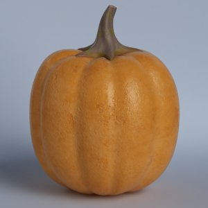 3D pumpkin model