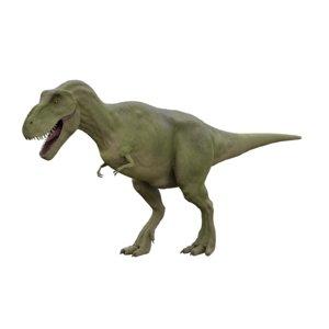 3D trex dinosaur model