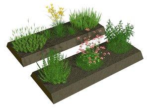 herb herbage 3D model