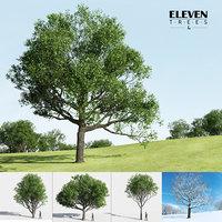 Eleven Trees 4 (+Growfx)