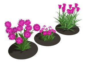 3D flower pink model