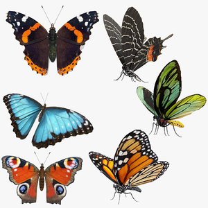3D model butterflies rigged 2 io