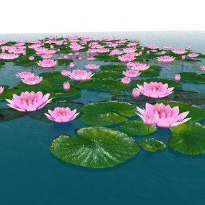 3D water flower model