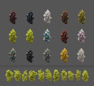 grape vines 3D model