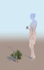 gobotree mangrove bush c 3D model