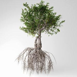 3D mangrove tree