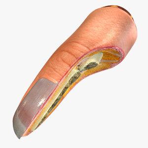 3D human finger