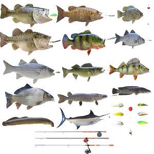 3D model fish lures carp