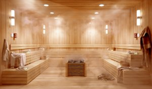 3D sauna room realistic corona model